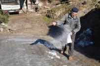 KIŞ MEVSİMİ - Buzlu Yola, Tuzlu Çözüm