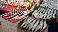 YAĞAN - Kar Ve Soğuk Hava Balık Fiyatlarını Arttırdı