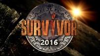SURVİVOR - 2016'Da Zirve Survivor'ın Oldu