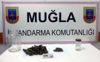 UYUŞTURUCU - Jandarma Uyuşturucuyla Mücadeleyi Sürdürüyor