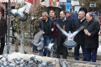MOBESE KAMERALARI - Kırıkkale Belediye Başkanı Saygılı Kuş Katliamının Takipcisiyiz