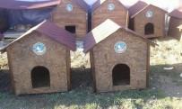 Sokak Hayvanlarına Belediye Desteği