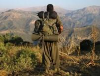 KAÇAK SİGARA - Şırnak'ta 2 terörist teslim oldu
