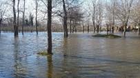 TARIM ARAZİSİ - Bafra'da Yer Altı Suları Bahçe Ve Tarım Arazilerini Göle Çevirdi