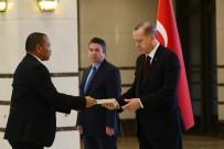 NAMIBYA - Cumhurbaşkanı Erdoğan Namibya Cumhuriyeti Büyükelçisini Kabul Etti