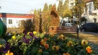 MESUT ÖZAKCAN - Gazeteci Barış Selçuk Parkı Çiçeklerle Renklendi