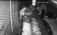 GÜVENLİK KAMERASI - Marketten Hırsızlık Anı Güvenlik Kamerasında