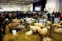 GÜBRE - Tarım Ve Hayvancılık Sektörünün Temsilcileri İzmir'de Buluşuyor