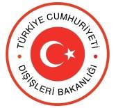 KıBRıS - Dışişleri Bakanlığından Tuğrul Türkeş Açıklaması
