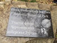 BATı KARADENIZ - Düzce Üniversitesi Adına Botanik Hatıra Parkı Oluşturuldu