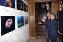 FOTOĞRAF SERGİSİ - Kuşadası'nda Su Altı Fotoğrafları Sergisi Açıldı