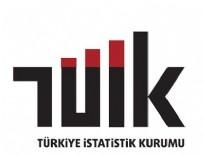 LÜTFI ELVAN - TÜİK'te 141 personel meslekten ihraç