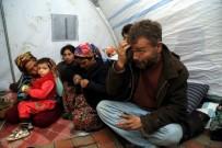 ALTUNTAŞ - Ankara'nın Göbeğinde Çadır Hayatı