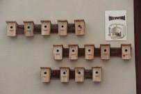 HATIPLI - Çankırı'da Kuşlar İçin İyilik Apartmanı