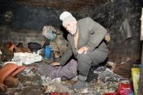 KÖPEK - Çöplüğe Dönen Damda Hayvanlarla Yaşayan Kardeşlere Belediye Sahip Çıktı