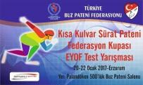 FEDERASYON BAŞKANI - Erzurum'da Buz Karnavalı Başlıyor