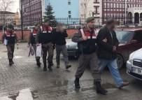 BÜYÜKBAŞ HAYVANLAR - Hayvan Hırsızları Kıskıvrak Yakalandı
