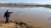 KAYMAKÇı - Ödemiş'te Yağmur Sonrası Tarlalarda Sel Mağduriyeti