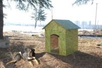 KÖPEK - SDÜ Kampüsündeki Sokak Hayvanları İçin Kulübe