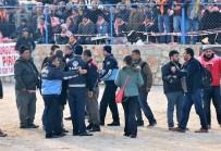 KıZıLAĞAÇ - MBGCD, Deve Güreşlerinde Basına Yönelik Şiddeti Kınadı