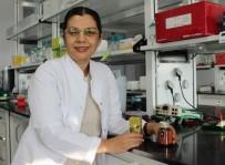 GIDA TAKVİYESİ - ERÜ'lü Bilim İnsanının Ürettiği 'Propolis' Kemoterapinin Yan Etkilerini Engelleyebilecek