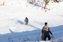 Şırnak'ta Yaban Hayvanları İçin Doğaya Yem Bırakıldı