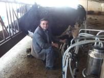 MISIR TOHUMU - Yenişehir'de Anlık Süt Kayıt Sistemi Başladı