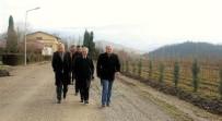 BENZERLIK - Zonguldak'ta Ginseng Potansiyel Deneme Sahaları Tespit Edildi