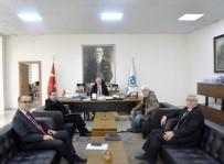 KAMULAŞTIRMA - Başkan Albayrak Açıklaması 'Hayrabolu Köprüsü İle İlgili Kamulaştırma Çalışmaları Başlatıldı'