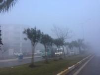 Milas'ta Yoğun Sis Etkili Oluyor