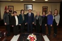 KADıN HAKLARı  - Kadın Hakları Derneği'nden Başkan Zolan'a Ziyaret
