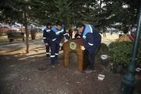BÜYÜKDERE - Odunpazarı Belediyesi Sokak Hayvanlarını Unutmadı