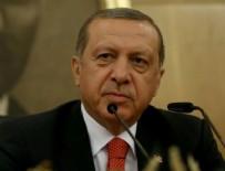 MOZAMBIK - Erdoğan Doğu Afrika ziyareti öncesi konuştu
