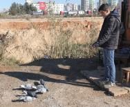 HIRSIZ - Duvarı Kırıp Keçiyi Ve Güvercinleri Çaldılar
