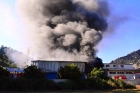 YANGINA MÜDAHALE - Süt Ürünleri Fabrikasında Korkutan Yangın