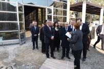 KORKULUK - Vali Demirtaş Adana Müze Kompleksinde İncelemede Bulundu