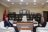 YUSUF ZİYA ÇELİKKAYA - Adapazarı Yeni Kaymakamı Çelikkaya'dan Başkan Dişli'ye Ziyaret