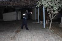 AGORA - Aydın'da Hırsızlar 2 Bin 350 Yıllık Tarihi Çaldılar