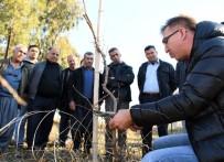 ERKEN UYARI - Çiftçi Bilinçleniyor, Üretim Artıyor