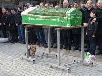 MEHMET İLHAN - (ÖZEL HABER) Vefakar Köpek, Her Gün Ölen Sahibinin Mezarına Koşuyor