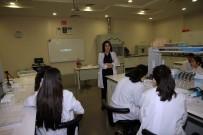 FEN BILIMLERI - Özel SANKO Fen Ve Teknoloji Lisesi İle Bilime Yolculuk