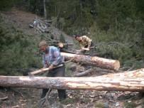 EROZYON - Çorum'da Ormanlara 71 Milyon Liralık Yatırım