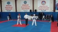 MURAT DURU - Develi'de 15 Temmuz Şehidi Murat Kocatürk Anısına Taekwondo Turnuvası Düzenledi