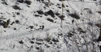 SÜMBÜL DAĞI - Karlı Dağlarda Nefes Kesen Operasyon