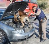 Özel Eğitimli Köpeklerden Sevkiyatlara Engel
