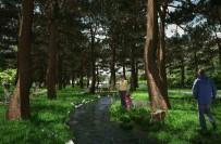 FUTBOL SAHASI - Sümerpark Projesinin İhalesi Tamamlandı