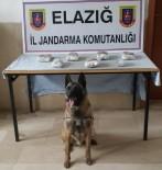 Narkotik Köpeği Trendeki Esrarı Buldu