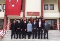 ZEYTİN YAĞI - MHP Aydın İl Teşkilatı Buharkent'te Ziyaretlerde Bulundu