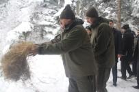 Bakan Eroğlu Yaban Hayvanları İçin Yem Bıraktı