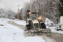 KIŞ LASTİĞİ - Sapanca'da Karla Mücadele Çalışmaları Sürüyor